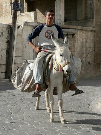 Syria: Aleppo, Hama